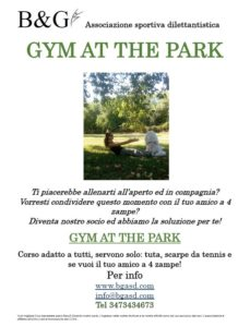 Gym At The Park